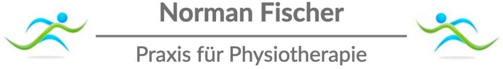 Norman Fischer Logo